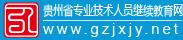 貴州省專業技術人員繼續教育網