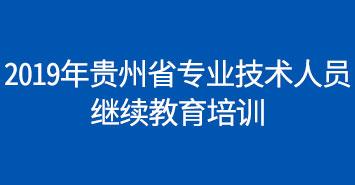 2019年贵州省专业技术人员继续教育网络培训