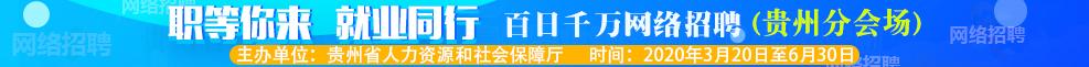 職等你來 就業同行:百日千萬網絡招聘專項行動(貴州分會場)