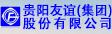 貴陽友誼(集團)股份有限公司
